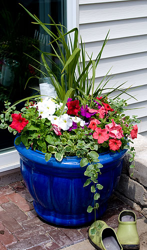 Katra filled the planter with annuals.