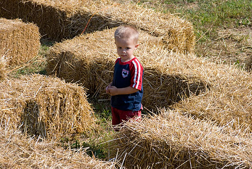 Lost in the straw maze