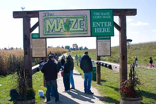 Entrance to the Maize Maze